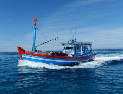 Cấp Giấy phép tạm thời cho tàu biển mang cờ quốc tịch Việt Nam