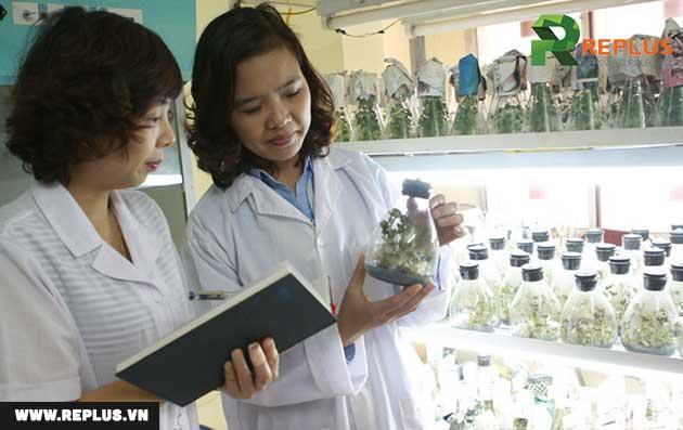Thủ tục cấp giấy phép nhập khẩu thuốc thú y