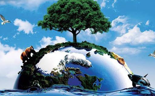 Thủ tục Đăng ký xác nhận kế hoạch bảo vệ môi trường